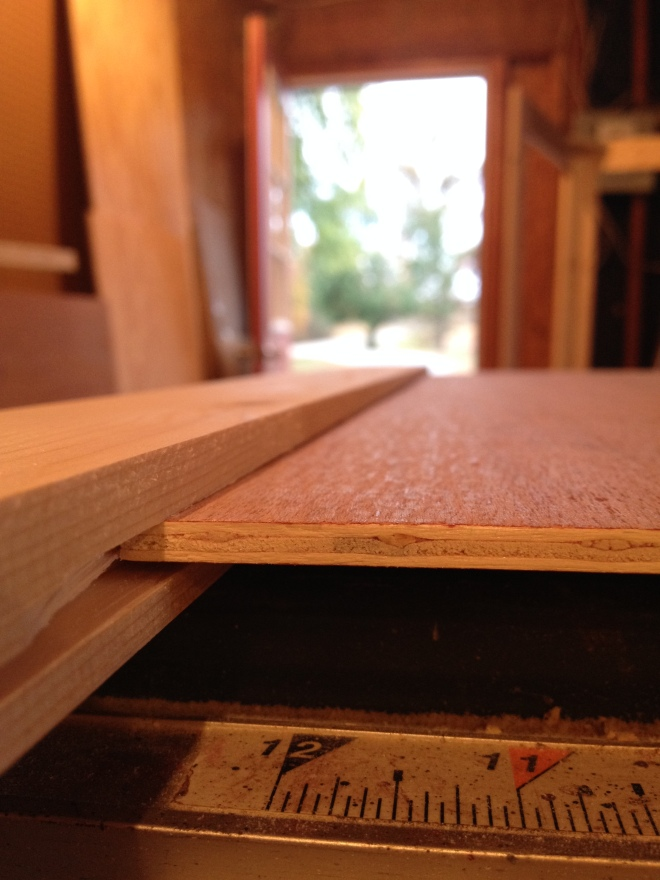 plywood panel dry fit in dadoes on cabinet door frame pieces